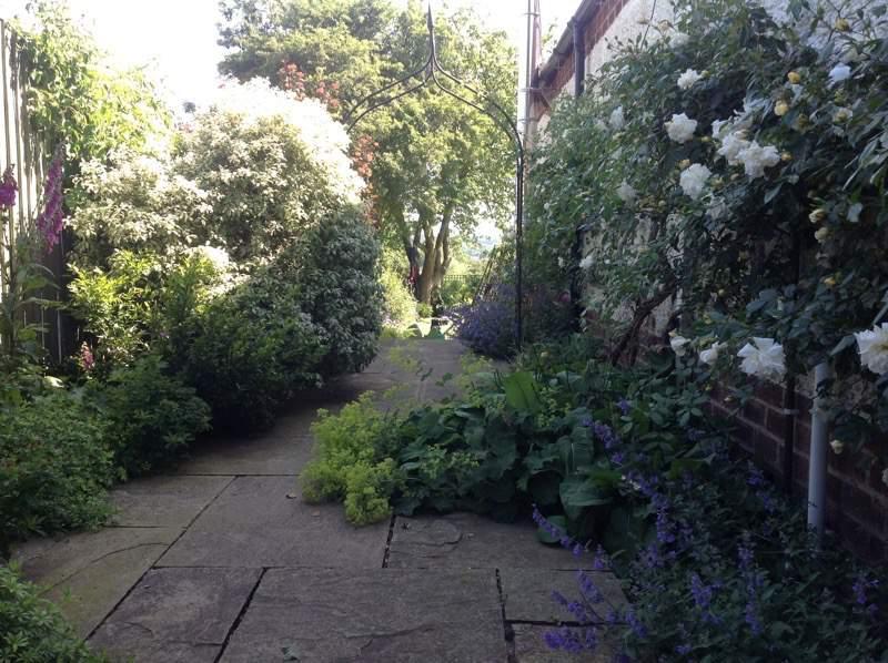Emma Scarborough Plant Lovers Garden - Emma Scarborough