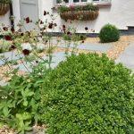 Cottage garden detail